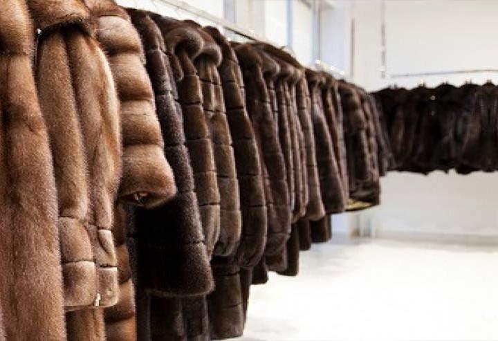 custodia capi pellicce